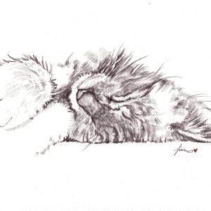 Leo (My Pet)